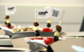 Fotografie Zebra - 0