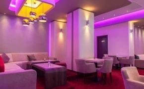 Fotografie Gatto Lounge - 0