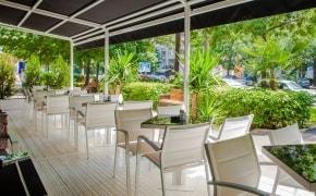 Fotografie Gatto Lounge - 1