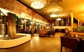 Doncafe Brasserie Dorobanti - 0