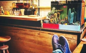 Croitoria de Cafea - 0