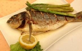 Fotografie Tasty Fish - 3