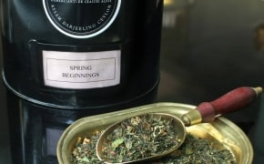 Fotografie Bernschutz & Co Tea - 2