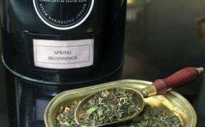 Fotografie Bernschutz & Co Tea - Icoanei - 3