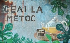 Ceai la Metoc - 0