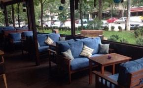 Tress Cafe - 0