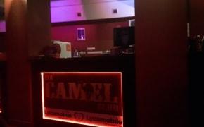 Da Camel Club - 1
